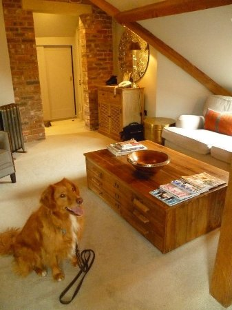 Austwick, UK: Jasper loves the attic room