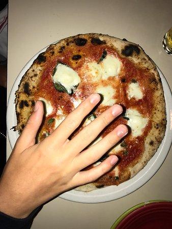 Tony's Pizza Napoletana: photo1.jpg