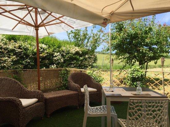 Giardino - Picture of Mezzodi - Caffe & Cucina, San Giovanni in ...