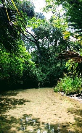 Silver Springs, FL: Juniper Springs Recreation Area