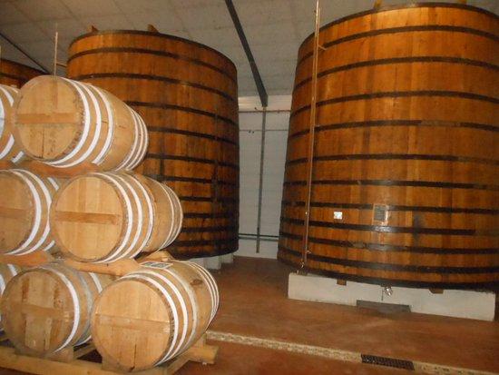 Les Vignerons de L'ile de Re: cuves de stockage
