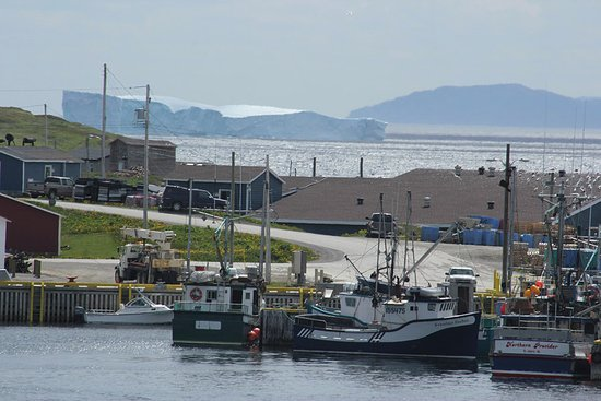 fishing boat wharf at Conche with large iceberg in the background