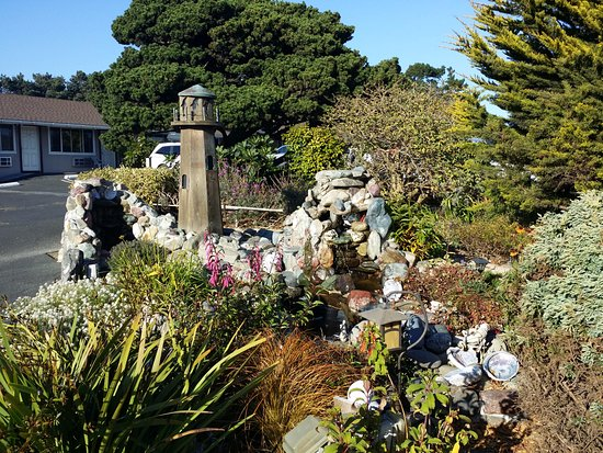 Surf Motel and Gardens: cute water feature with adorable frog statues and shells