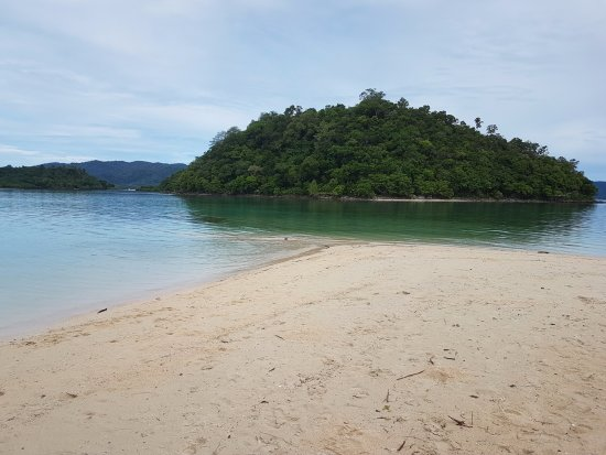 Port Barton, ฟิลิปปินส์: Turtle island (not seen: 3 turtles we saw swim by as our boat coasted away from Inaladelan)