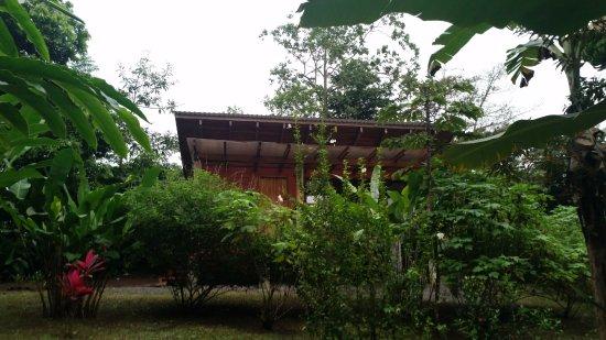 Casitas Tenorio B&B: our forest bungalow!