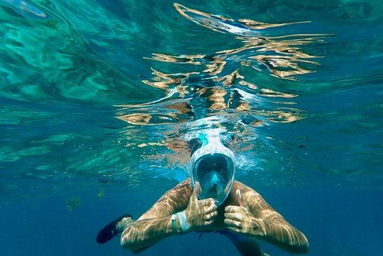 Bayahibe, Dominican Republic: Snorkelen voor het Catalina eiland
