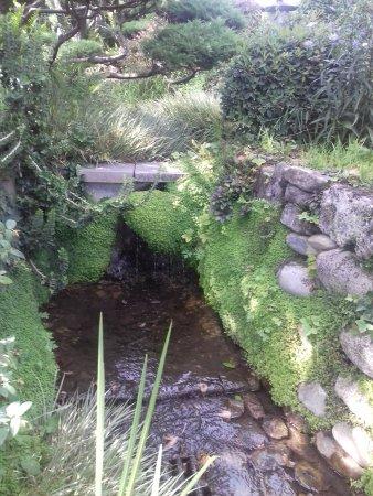 Jardin zen d 39 erik borja beaumont monteux france top tips before you go tripadvisor - Beaumont monteux jardin zen ...