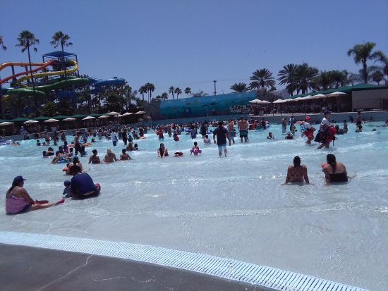Knott's Soak City U.S.A.: Wave zone