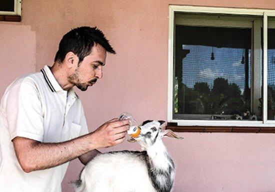Lamezia Terme, Włochy: Per essere in armonia con la natura ci prendiamo cura dei nostri animali