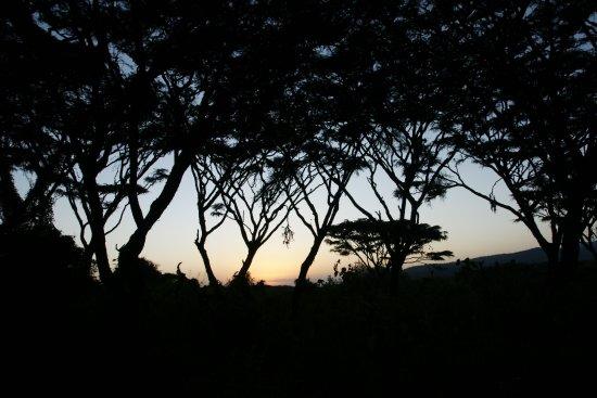 Lemala Ngorongoro Tented Camp: Sonnenuntergang - man muss sich beim fotografieren echt beeilen