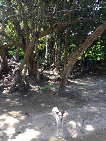 Parque Nacional Natural Tayrona: photo0.jpg