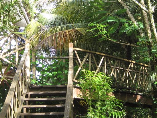 Punta Gorda, Belice: Bridge between Suites