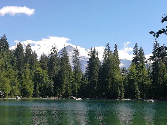Passy, France: Le lac vert et vue sur le Mont Blanc