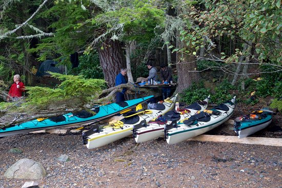 Telegraph Cove, Canada: One of our camping spots on the 6 day nomadic North Broughton Trip
