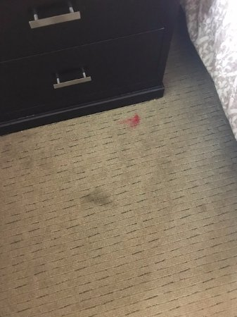Holiday Inn Stillwater - University East : Unbelievable stained carpeting