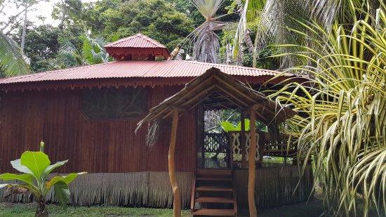 Hotel La Costa de Papito Picture