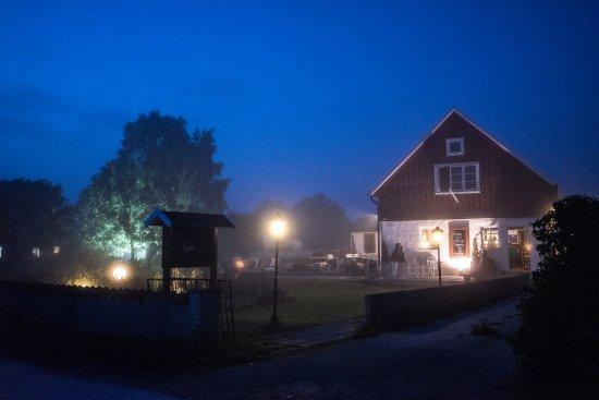 Tofta, Zweden: Mystical fog