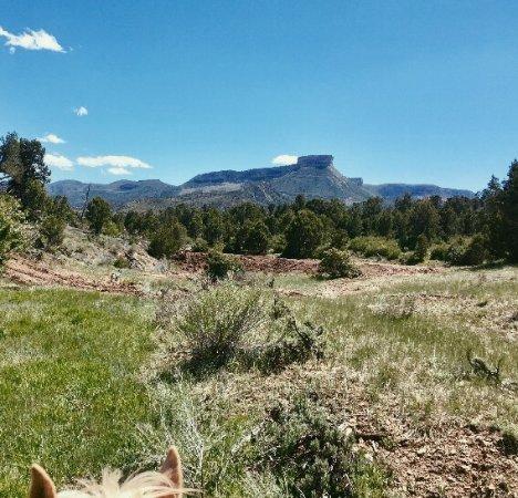 Mancos, CO: Beautiful Colorado Views