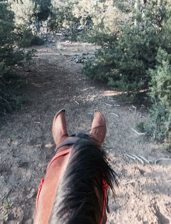 Four Corners Horseback Adventures