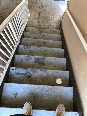 Extended Stay America - Denver - Tech Center - North: All the stairs, it's all this disgusting every single area of this property.