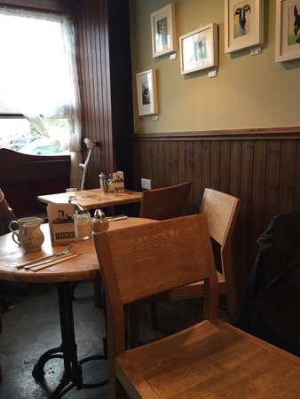 Kinvara, Irlanda: Fox's