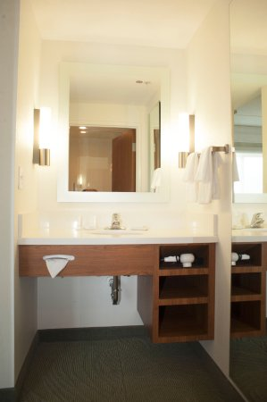 SpringHill Suites by Marriott Chesapeake Greenbrier: Guest Bathroom