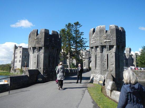 Ireland's School of Falconry: Ashford Castle Gate