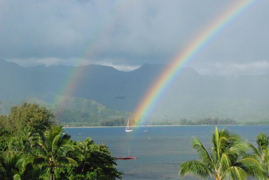 St. Regis Princeville Resort: Early morning view from our room.