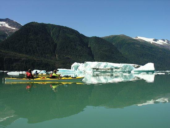 Gustavus, AK: Kayaking around giant icebergs!