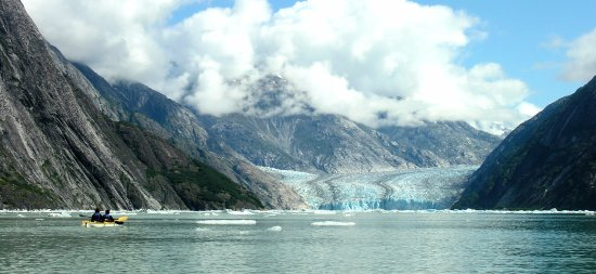 Gustavus, AK: Kayaking in an ice-sculpted glacial fjord.