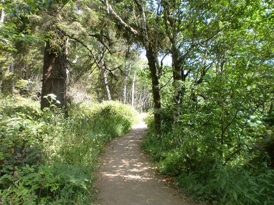 Humboldt County, Калифорния: Patrick's Point State Park Rim Trail during summer