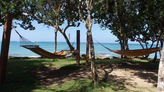 Dreams La Romana Resort & Spa: Hammocks near the beach