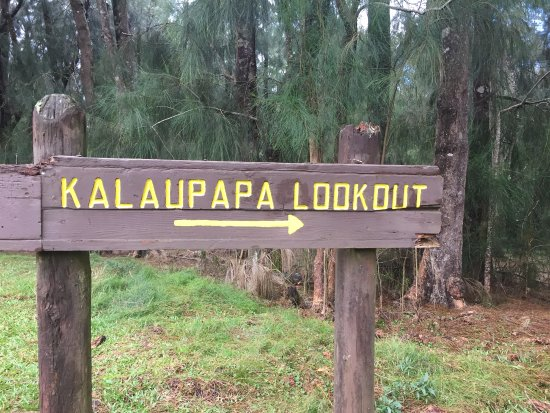 Puu o Hoku Ranch: Be sure to visit Kalaupapa Lookout and read about the leper colony and Father Damien.