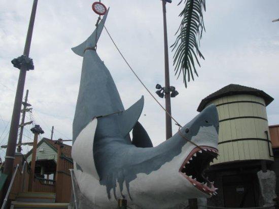 Ocean City Boardwalk: Jaws!!