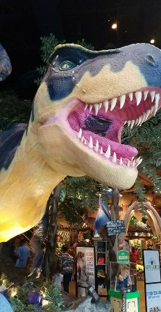 T-Rex: Entry