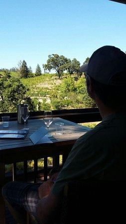 Windsor, Kalifornia: View from the upper floor tasting area