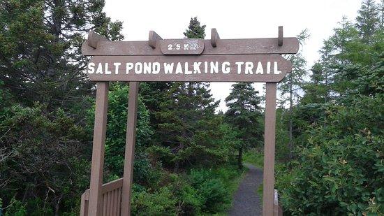 Salt Pond Walking Trail照片
