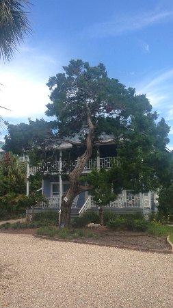 Cedar Key, FL: photo1.jpg