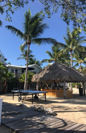 Coconut Palm Inn Photo