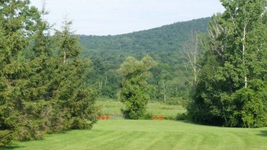 Yankee Inn: View of lawn, pond & hills