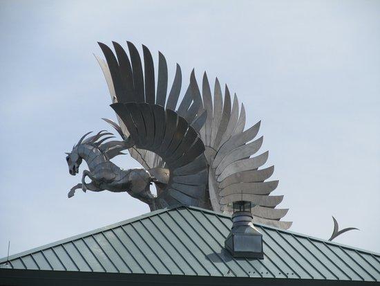 Kearney, NE: love this horse!