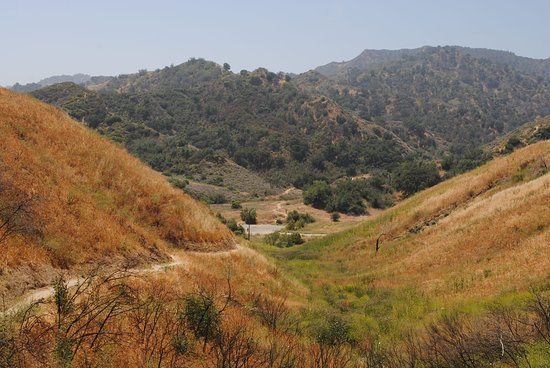 Newhall, CA: Dry Towsley Canyon from Elder Trail looking south, late spring.
