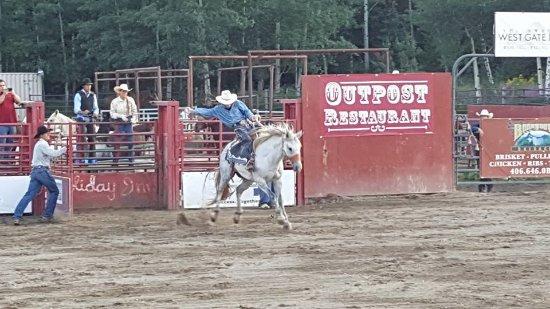 Yellowstone Rodeo: Buckin Broncos