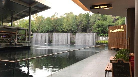Oasis Coyoacan