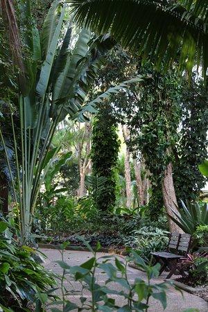 Yandina, Australia: Beautiful gardens
