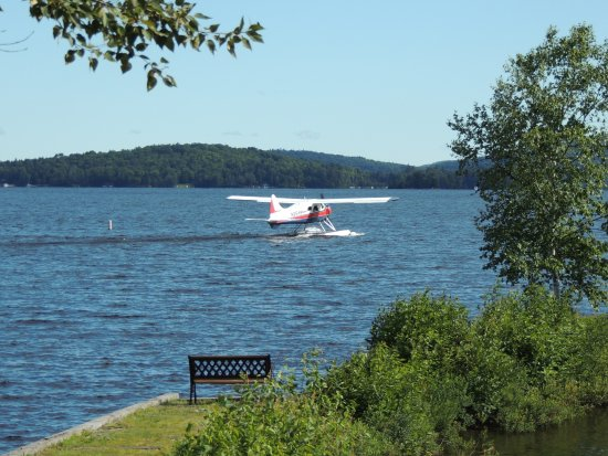 Chalet Moosehead Lakefront Motel: Float plane departing on the lake in front of the motel