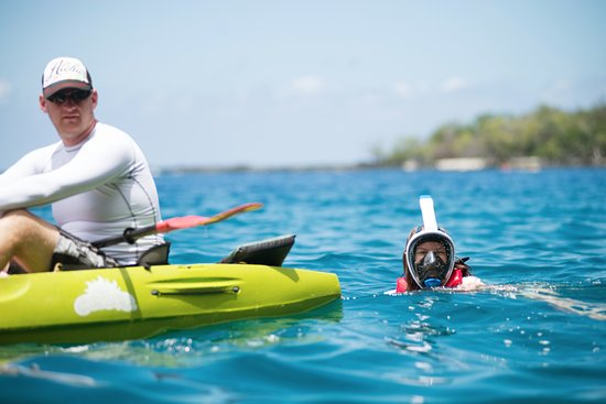 Kealakekua, Hawaje: Some of us chose to swim with the boat instead. So we didn't miss anything!
