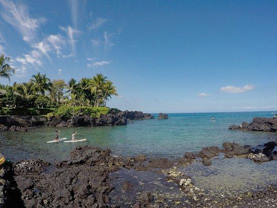 Kealakekua, Hawaje: The cove where you take off from.