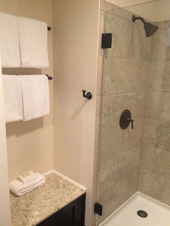 Village Hotel On Biltmore Estate Walk In Shower Room With 2 Double