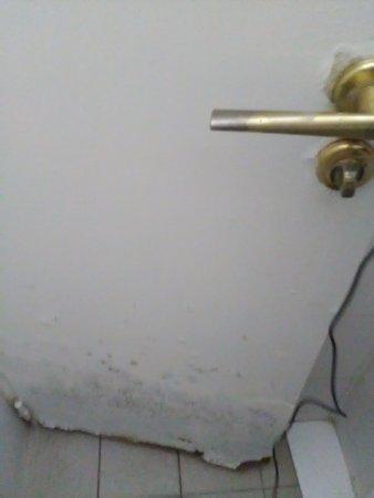 BVJ Opera Youth Hostel : Disgusting door
